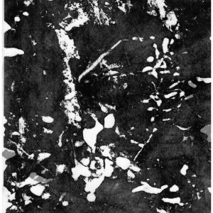 Watermarks. Mixed Media - image transfer on mylar
